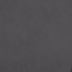 Платиново-сірий